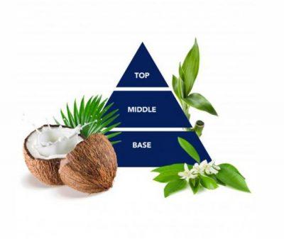 Felce Azzurra dušas želeja Coconut & Bamboo